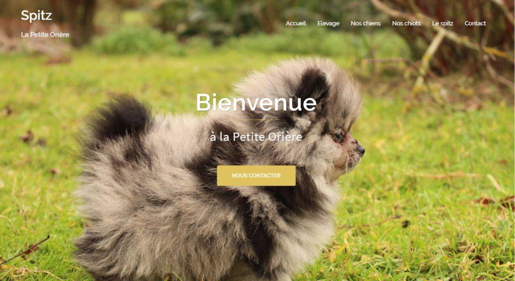 Elevage de Spitz de La Petite Orière