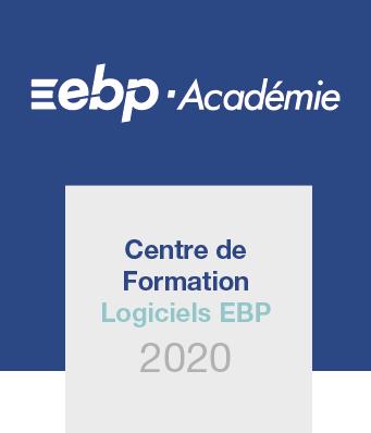 Logo CFE 2020